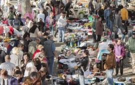 feira vandoma 1 - 01nov12