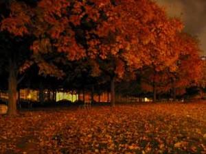 ar de outono