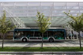 novos autocarros - filipa brito