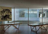 """Ilustrações de Ana Biscaia, no livro """"Poucas Letras, Tanto Mar"""", em exposição no Auditório da Biblioteca Almeida Garrett"""