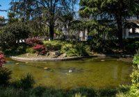 Jardim do Campo 24 de Agosto está, depois de requalificado, mais verde e já com os seus repuxos a funcionar…