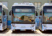 Câmara Municipal de Braga e TUB assumem transporte de ex-combatentes