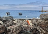 """Exposição itinerante """"Banco de Pescadores"""" voltou à praia da Aguda"""