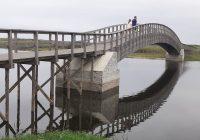 Barrinha de Esmoriz aguarda nova fase de desassoreamento mas poluição continua a concentrar-se na lagoa