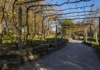 Visitas e atividades para crianças regressaram às hortas pedagógicas do Porto